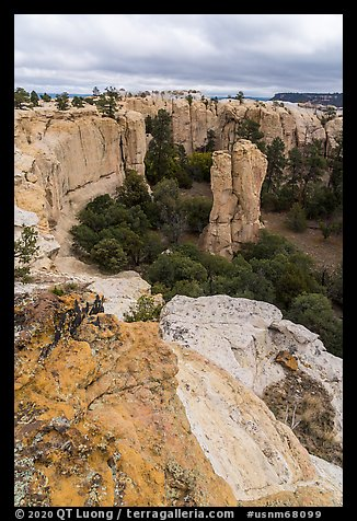 Box canyon from rim. El Morro National Monument, New Mexico, USA (color)