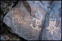 Petroglyphs including a star person, Petroglyph National Monument. New Mexico, USA ( color)