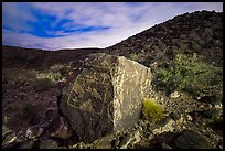 Large rock covered with petroglyphs on both sides, Petroglyph National Monument. New Mexico, USA ( color)