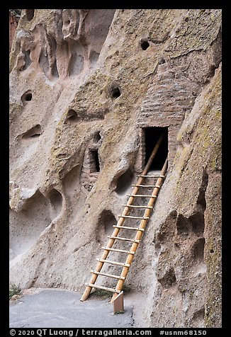 Ladder leading to cave dwelling. Bandelier National Monument, New Mexico, USA (color)