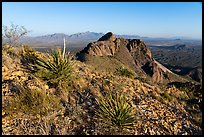 Organ Mountains seen from Dona Ana mountains. Organ Mountains Desert Peaks National Monument, New Mexico, USA ( color)
