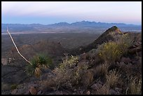Organ Mountains from Dona Ana Peak at sunset. Organ Mountains Desert Peaks National Monument, New Mexico, USA ( color)