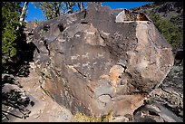 Boulder with petroglyphs, Big Arsenic. Rio Grande Del Norte National Monument, New Mexico, USA ( color)