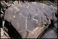 Large human figure petroglyphs on top of bouder, Big Arsenic. Rio Grande Del Norte National Monument, New Mexico, USA ( color)
