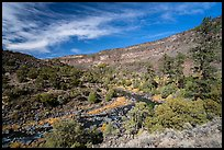 Big Arsenic Spring area. Rio Grande Del Norte National Monument, New Mexico, USA ( )