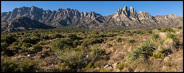 Organ needles, Rabbit Ears, Baylor Peak above Aguirre Springs. Organ Mountains Desert Peaks National Monument, New Mexico, USA (Panoramic color)