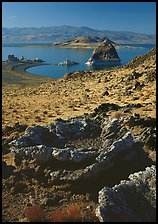 Tufa rock and pyramid. Pyramid Lake, Nevada, USA ( color)