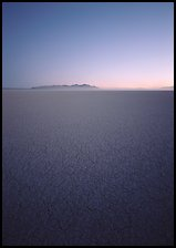 Flat playa with thin mud cracks, Black Rock Desert. Nevada, USA (color)