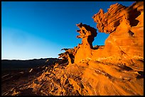 Devils Fire, late afternoon. Gold Butte National Monument, Nevada, USA ( )