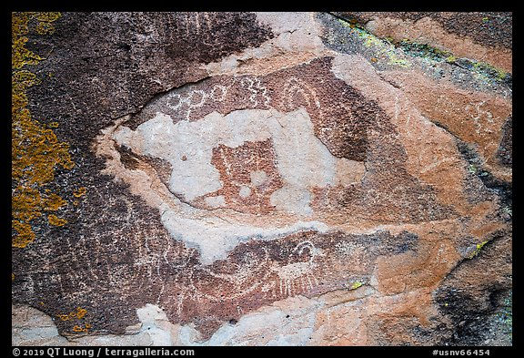 Petroglyphs carved in soft red volcanic rock, Mt Irish Archeological district. Basin And Range National Monument, Nevada, USA (color)
