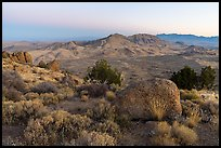 Tramp Ridge and Paradise Valley from Gold Butte Peak. Gold Butte National Monument, Nevada, USA ( )