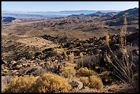 Looking north from Gold Butte Peak. Gold Butte National Monument, Nevada, USA ( )