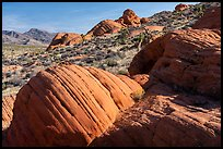 Red sandstone rocks, Whitney Pocket. Gold Butte National Monument, Nevada, USA ( )