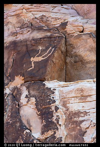 Rock wall with falling Man petroglyph. Gold Butte National Monument, Nevada, USA (color)
