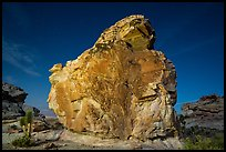 Calvin's Rock at night. Gold Butte National Monument, Nevada, USA ( )