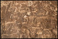 Close-up of densely packed petroglyphs, Shooting Gallery. Basin And Range National Monument, Nevada, USA ( color)