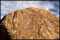 Boulder with densely packed petroglyphs and sky, Shooting Gallery. Basin And Range National Monument, Nevada, USA ( color)
