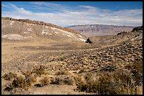 Valley near Badger Mountain. Basin And Range National Monument, Nevada, USA ( )