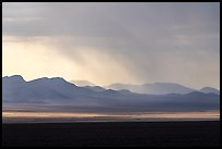 Distant mountains with storm brewing. Basin And Range National Monument, Nevada, USA ( )