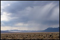 Sagebrush and distant storm, Garden Valley. Basin And Range National Monument, Nevada, USA ( )