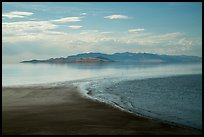 Beach and Great Salt Lake, Antelope Island. Utah, USA ( color)