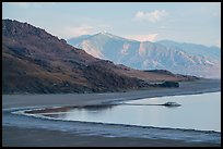 Shoreline and desert hills, Antelope Island, Great Salt Lake,. Utah, USA ( color)