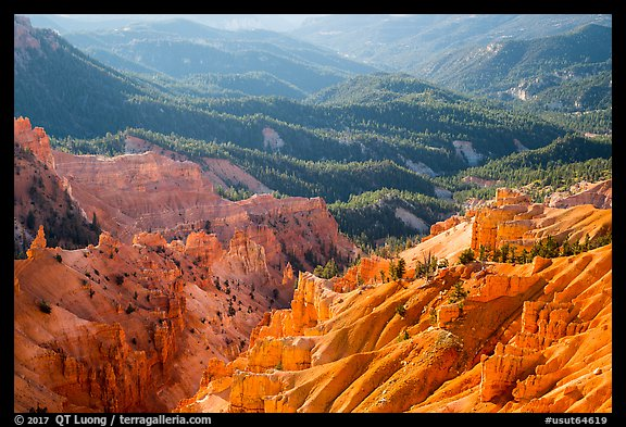 Eroded ridges and forest. Cedar Breaks National Monument, Utah, USA (color)