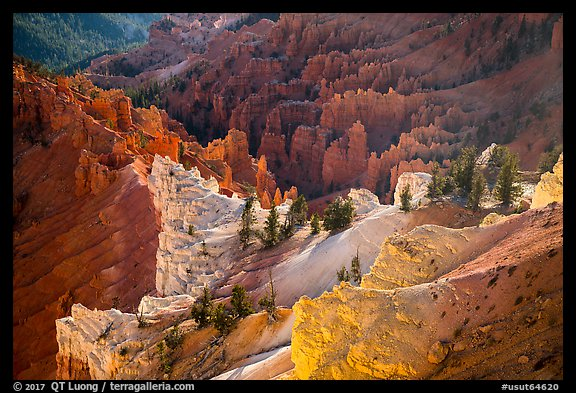 Colorful eroded rocks. Cedar Breaks National Monument, Utah, USA (color)