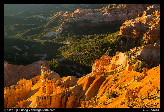 Hoodoos overlooking deep amphitheater. Cedar Breaks National Monument, Utah, USA (color)