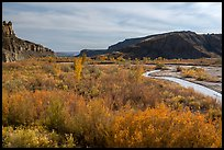 Autum foliage and stream, Cottonwood Canyon. Grand Staircase Escalante National Monument, Utah, USA ( color)