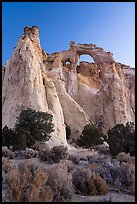 Sagebrush and Grosvenor Arch at dawn. Grand Staircase Escalante National Monument, Utah, USA ( color)