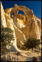Grosvenor Arch, early morning. Grand Staircase Escalante National Monument, Utah, USA ( color)