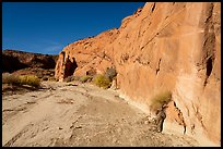 Coyote Gulch dry creek bed. Grand Staircase Escalante National Monument, Utah, USA ( color)