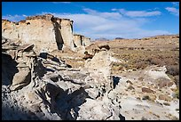 Cliffs and Wahweap Wash. Grand Staircase Escalante National Monument, Utah, USA ( color)