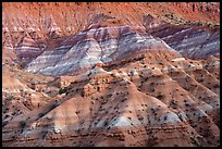 Chinle formation badlands, Old Paria. Grand Staircase Escalante National Monument, Utah, USA ( color)
