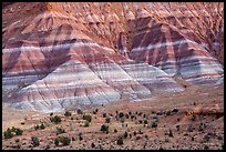 Colorful badlands of Chinle formation, Old Paria. Grand Staircase Escalante National Monument, Utah, USA ( color)