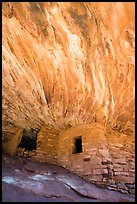 House on Fire Ruin. Bears Ears National Monument, Utah, USA ( color)