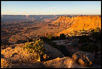 Lockart Basin and canyon rims, sunset. Bears Ears National Monument, Utah, USA ( color)