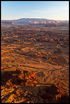 Indian Creek from Needles Overlook, sunset. Bears Ears National Monument, Utah, USA ( color)