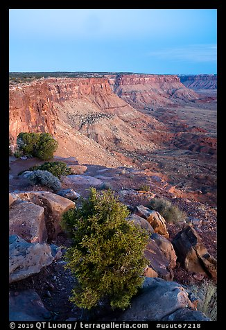 Canyon Rims, dusk. Bears Ears National Monument, Utah, USA (color)