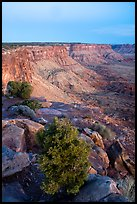 Canyon Rims, dusk. Bears Ears National Monument, Utah, USA ( color)