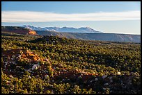 Blue Mountains from Salvation Knoll. Bears Ears National Monument, Utah, USA ( color)