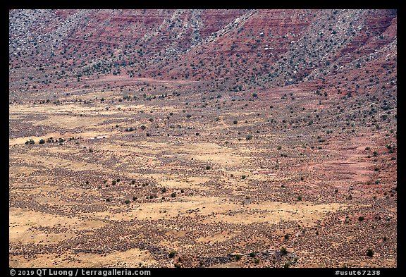 Distant detail, Valley of the Goods floor and cliffs. Bears Ears National Monument, Utah, USA (color)