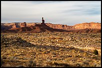 Valley of the Gods with Cedar Mesa Cliffs. Bears Ears National Monument, Utah, USA ( color)