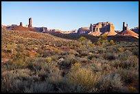 Desert vegetation, butte and spires, Valley of the Gods. Bears Ears National Monument, Utah, USA ( )