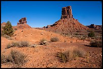 Sandstone buttes in Valley of the Gods. Bears Ears National Monument, Utah, USA ( )