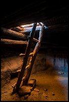 Ladder, Perfect Kiva. Bears Ears National Monument, Utah, USA ( )