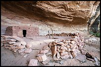 Kiva and ruin with doorway. Bears Ears National Monument, Utah, USA ( )