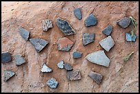 Close-up of pottery shards. Bears Ears National Monument, Utah, USA ( )