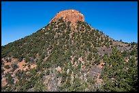 West Bears Ears Butte. Bears Ears National Monument, Utah, USA ( )